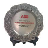 新天(瑞大)2012年度ABB市场开拓奖